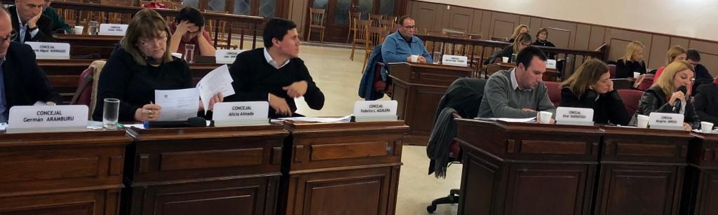 Concejo: preocupación por créditos UVA y vigencia de ordenanza sobre ordenamiento territorial