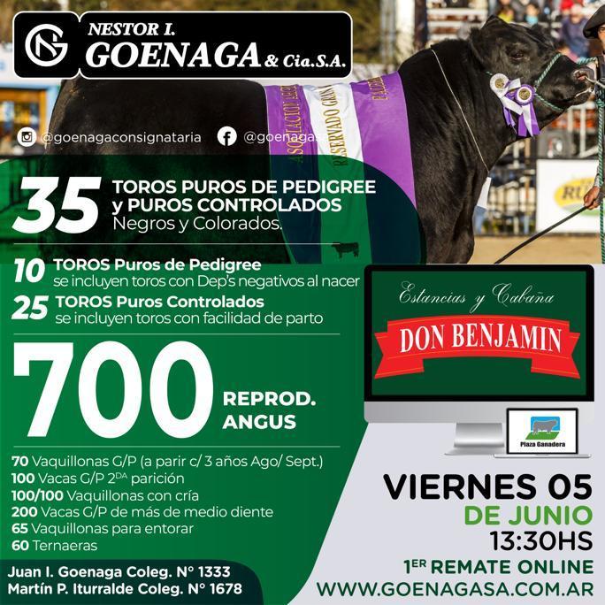 Primer remate on line viernes  5 de junio Cabaña Don Benjamín