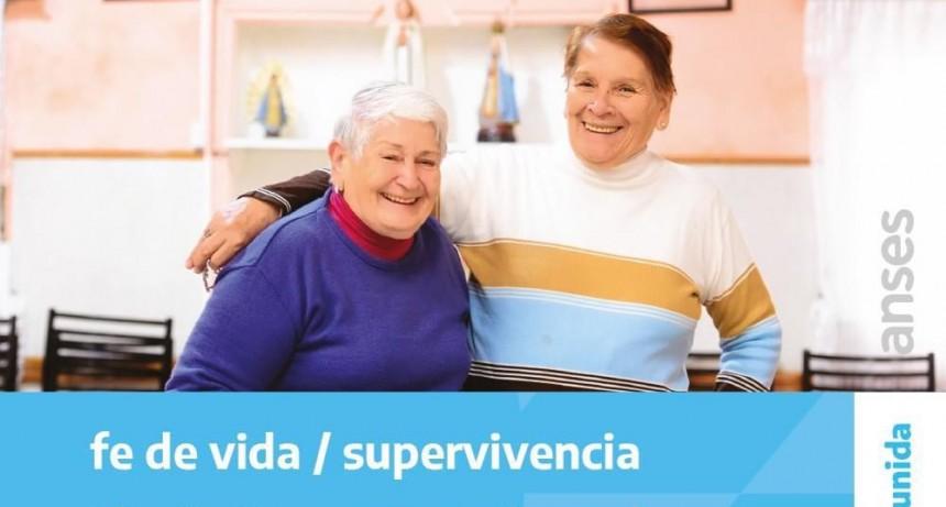 ANSES: Prolongan la supervivencia y toman trámites para jubilación on line