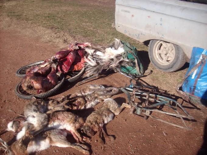 Aprehenden a cuatro cazadores furtivos