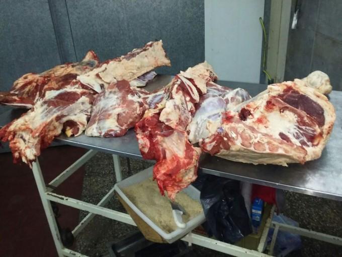 Clausuran carnicería por presunta faena clandestina