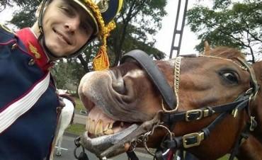 Selfie: el granadero y su caballo