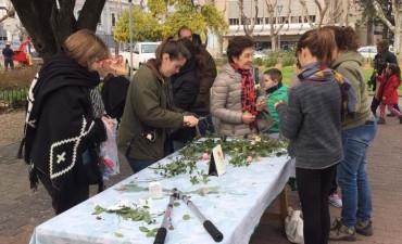 Se realizó la jornada de poda de rosas en la plaza central