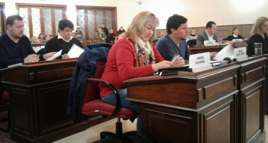 Concejo Deliberante: se aprobó por mayoría el proyecto sobre el estacionamiento medido