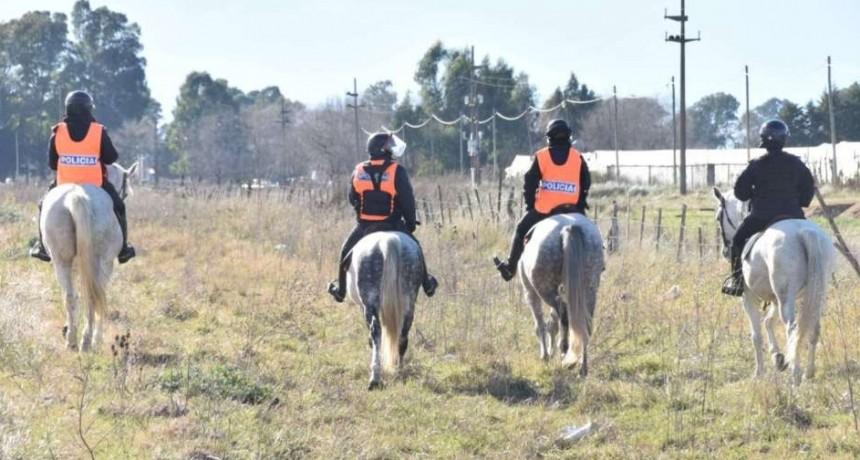 Caballos, perros y helicóptero siguen con la búsqueda de Cordero