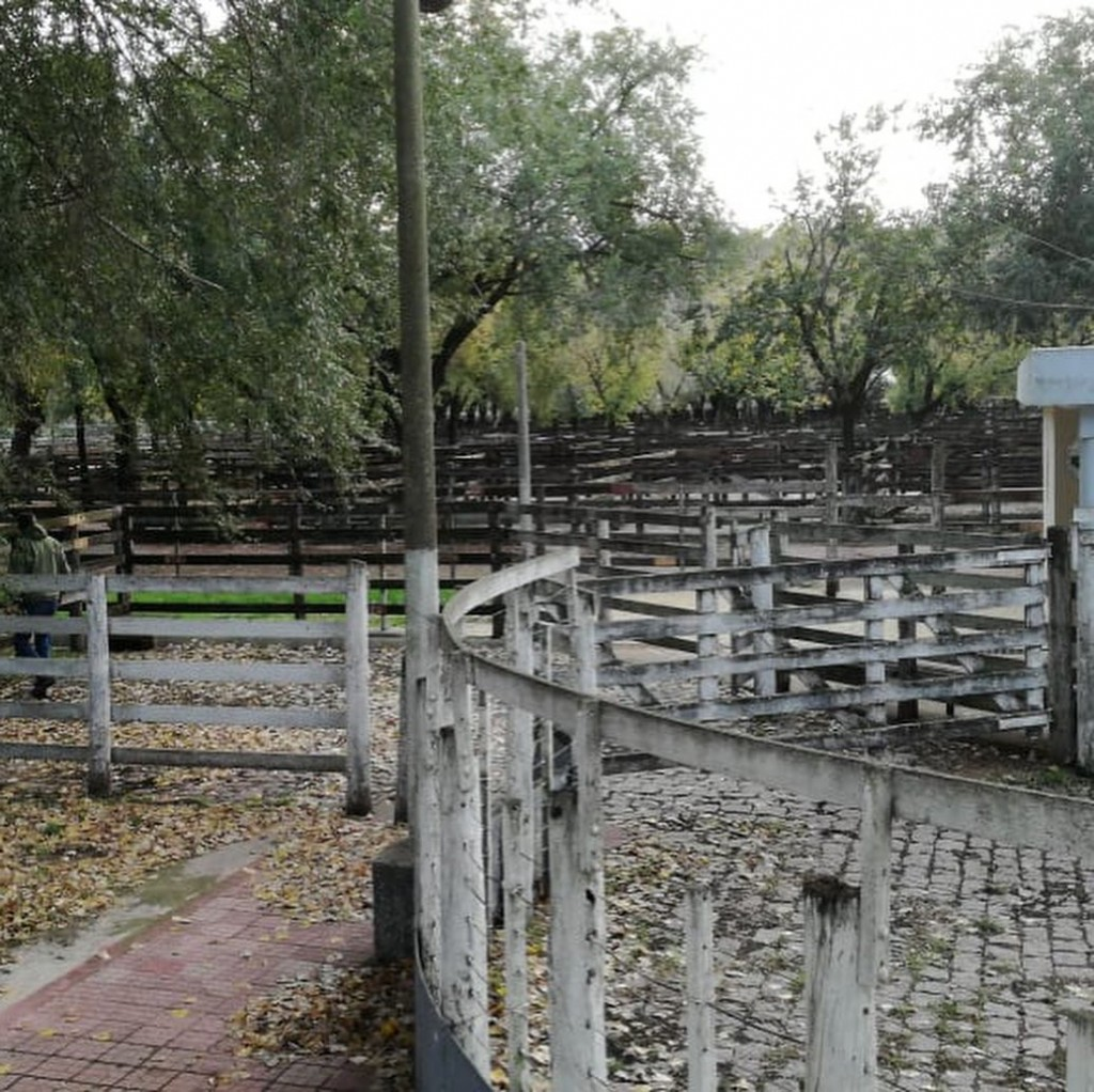 La Rural confirma fecha de realización de la Ganadera