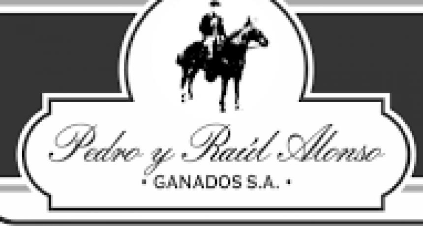 'Muchos remates físicos esta semana Pedro y Raúl Alonso Ganados S.A el próximo miércoles en Tandil'