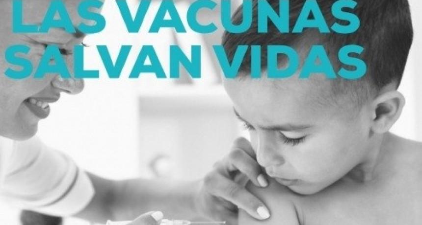 Vacunación : se registra una notable caída durante la pandemia
