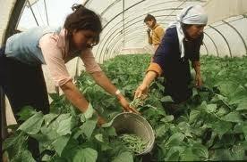 Encuentro de Antropología Rural: Qué comemos y cómo vivimos