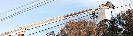 Tras la tormenta, persisten algunos inconvenientes en el servicio eléctrico
