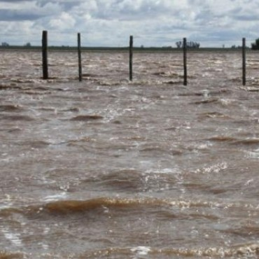General Lamadrid declarada en Desastre Agropecuario