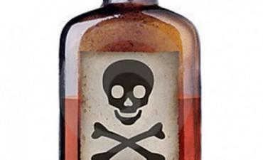 Alertan por el envenenamiento de perros