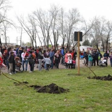 En lo que va del año se plantaron 2500 árboles en la ciudad