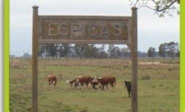 Cine Nacional en Espigas