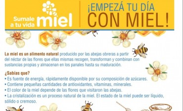 """""""Sumale miel a tu vida"""": promoción de la actividad apícola"""