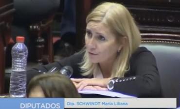 La diputada Schwindt consultará a Aranguren por los subsidios