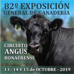 82º Exposición General de Ganadería y Circuito Angus Bonaerense en Olavarría