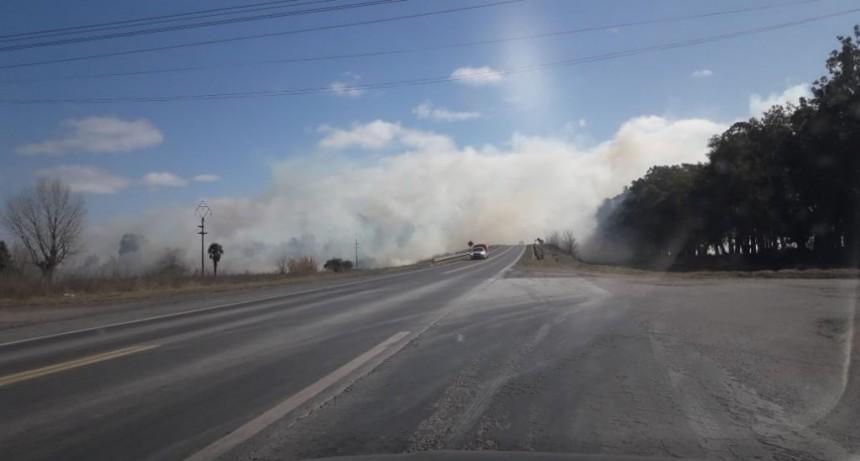 Dos incendios de pastos hacia el mediodía del domingo