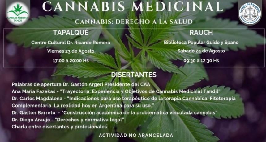 Jornadas sobre 'Cannabis: Derecho a la Salud'