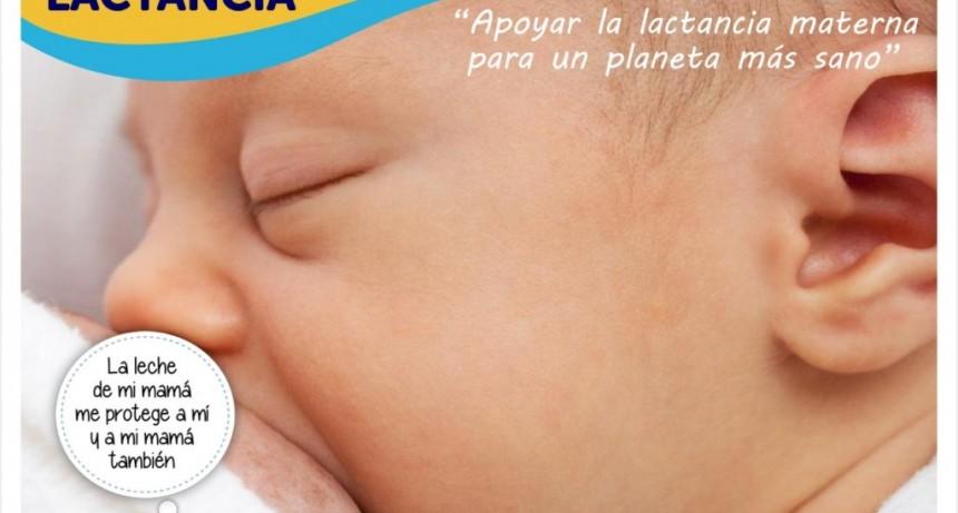 'La leche materna es un órgano vital'