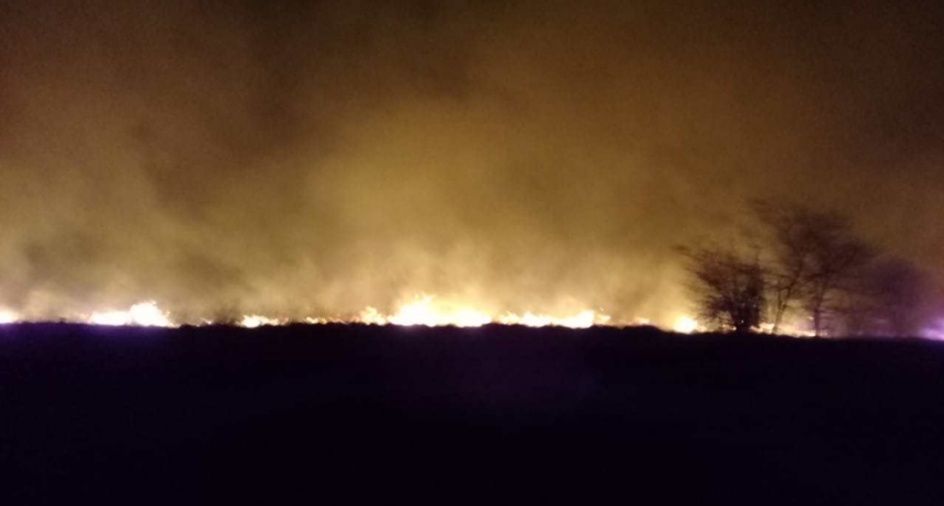 Luego de 6 horas, controlaron el incendio en el predio de Cementos Avellaneda