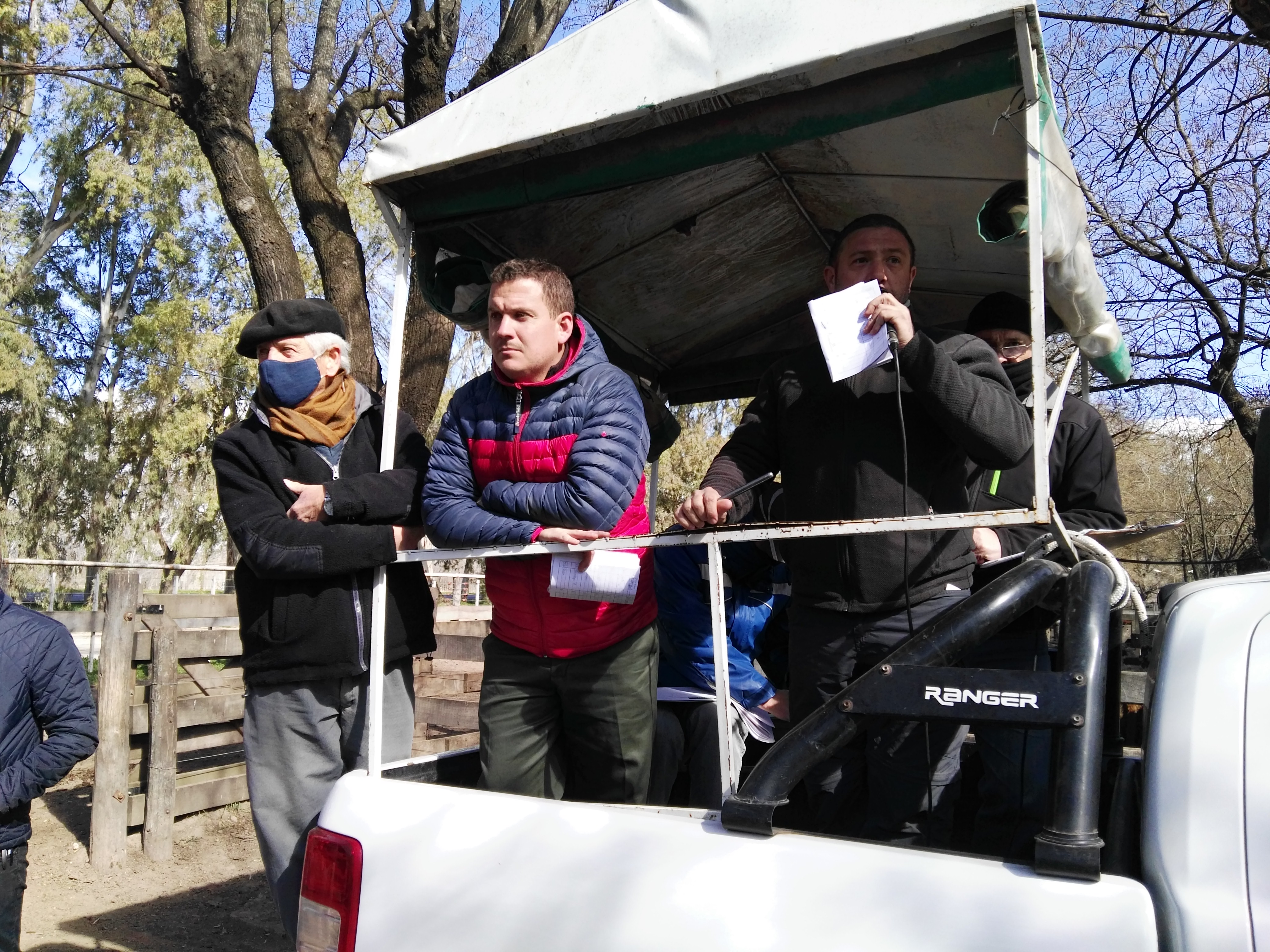 'Valores firmes en la invernada en la tarde del remate de Néstor I Goenaga y Cía S.A en Azul'
