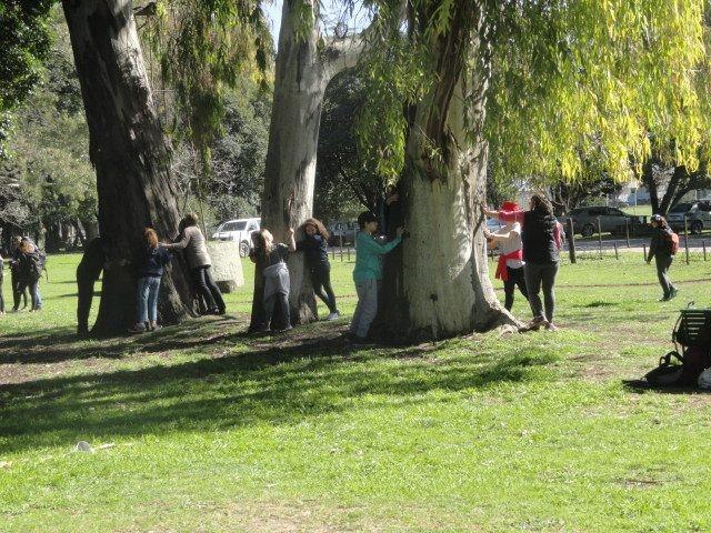 Este domingo se realizará la Jornada por el Día del Árbol