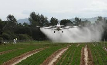 Raúl Monferrer presentó los servicios de Aviación Agrícola Argentina S.A