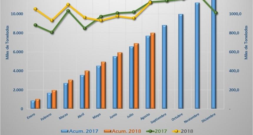Cemento: aumentaron despachos respecto a Julio, se mantienen comparados con agosto del 2017