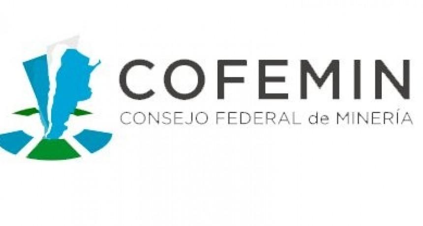 Minería: beneplácito por la participación de la provincia en la directiva de COFEMIN
