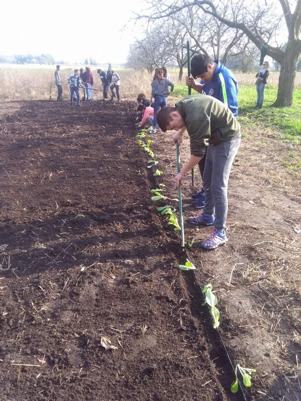 El valor agregado en la producción y la educación: El modelo de la Escuela Agropecuaria