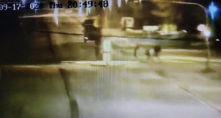 Robaron una cámara de seguridad municipal, instalada en el Barrio Belén