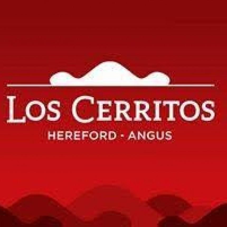 ' Un clásico venta anual Cabaña Los Cerritos este año vía online '