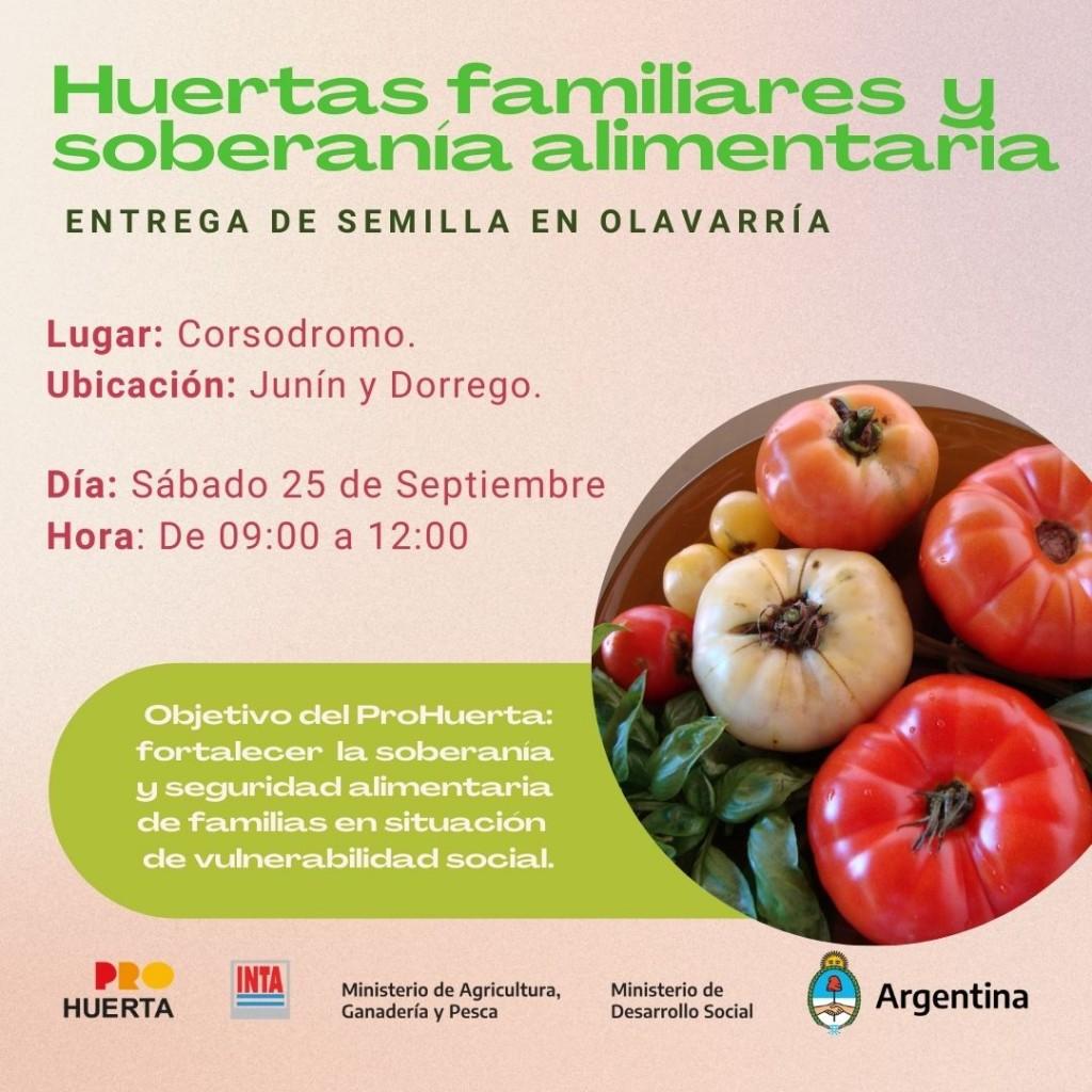 Pro Huerta: El 2020 se dieron casi 30% más de semillas que en 2019