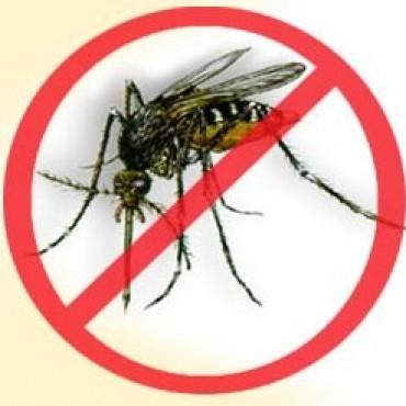"""La Provincia lanzó la Campaña contra el Dengue y advirtieron que el contexto regional """"es preocupante"""""""