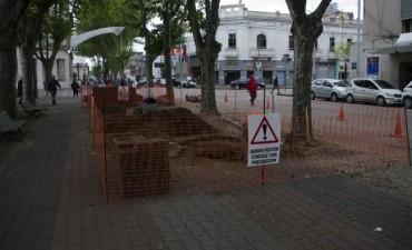 Remodelaciones en la plaza central