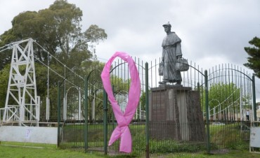 """""""Lolas en campaña"""": ya se observan lazos rosas en distintos puntos de la ciudad"""
