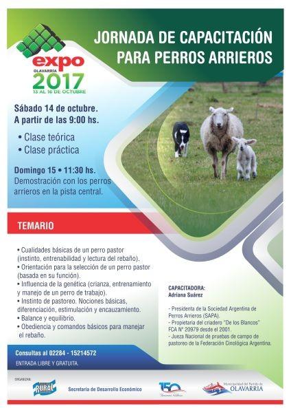 Jornada de capacitación para perros arrieros en la Expo Olavarría