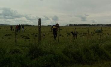 Hallaron cazadores furtivos en la zona del cuartel II