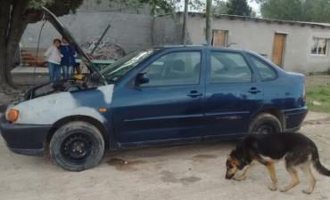 Dan con auto robado en Azul