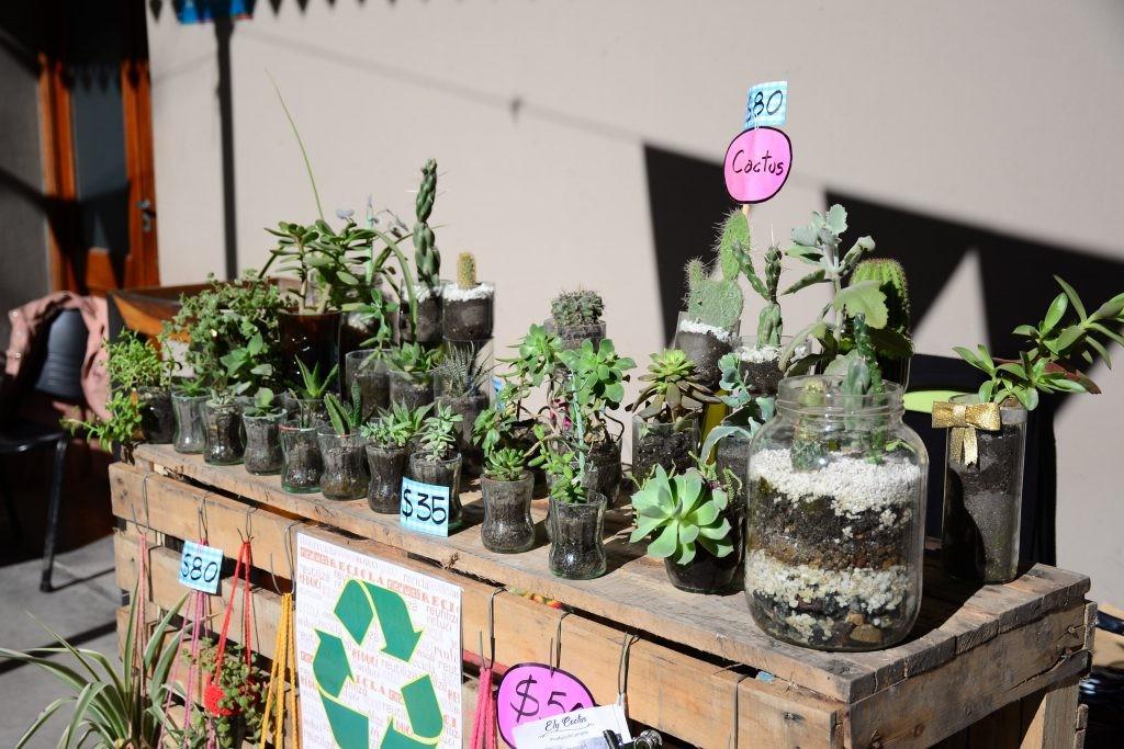 Feria Agroalimentaria: abierta la inscripción para emprendedores