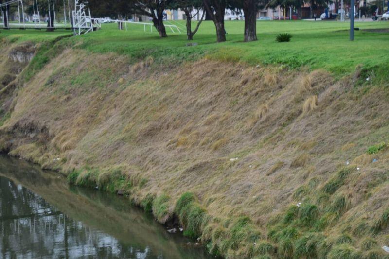 Nuevo pedido del Eseverrismo para saber si el Municipio usó glifosato en el Parque Mitre