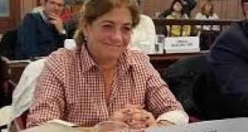 HCD: Se debate proyecto de comisaría en Sierra Chica