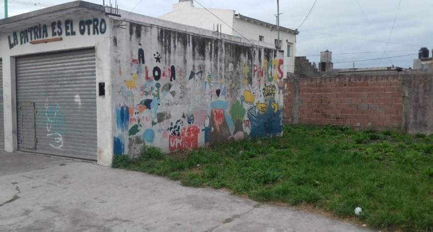 Sustraen postes destinados a Huerta Comunitaria