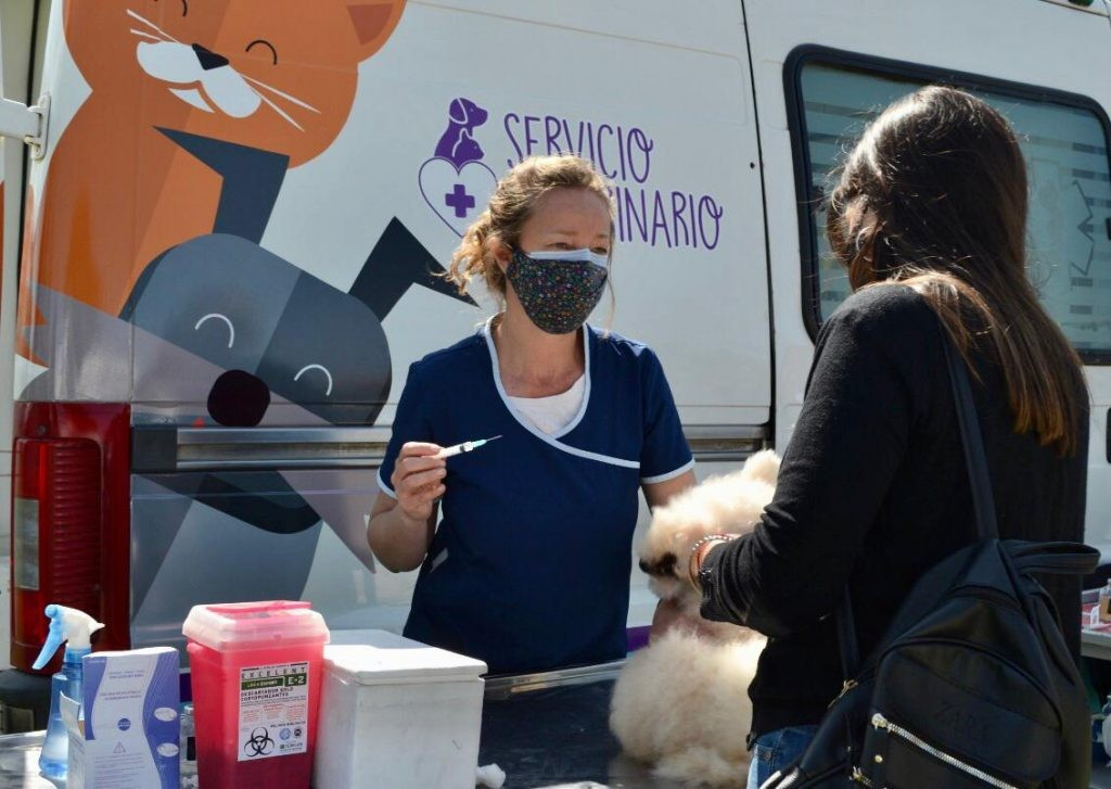 Antirrábica: vacunan en Barrio PyM este lunes