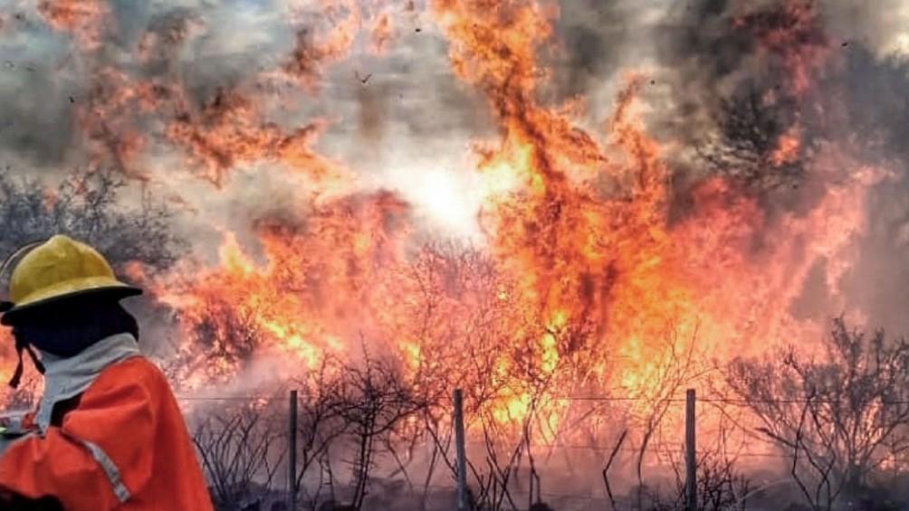 Confirman relación entre los incendios y el modelo de extracción de riqueza