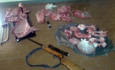 Secuestraron carne de procedencia ilegal en un allanamiento