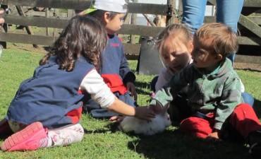 """Actividades del Jardín Maternal Municipal """"Arco Iris"""""""
