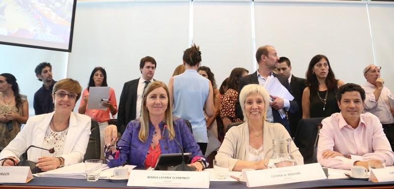Schiwndt encabezó su última reunión como presidenta de la Comisión de Defensa del Consumidor