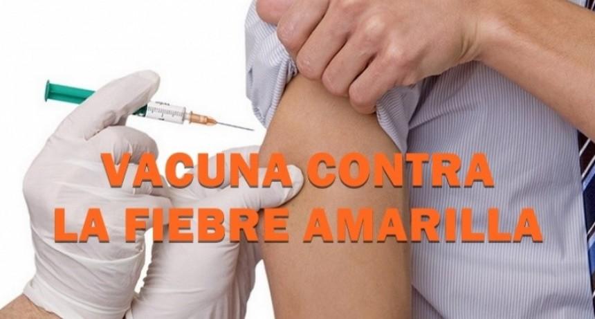 Fiebre Amarilla: recomiendan a los viajeros vacunarse con tiempo